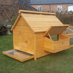 Gather Your Eggs in Style with Chicken Coops for Sale at In the Market