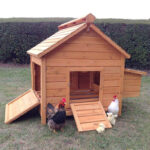 8 Bird Large Chicken Coop