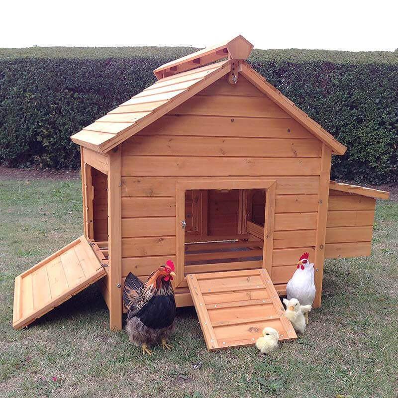 8 Bird Large Chicken Coop With Optional Run