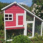 Carrot Cottage Rabbit Hutch