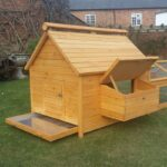 12 Bird Large Chicken Coop PRE-ORDER