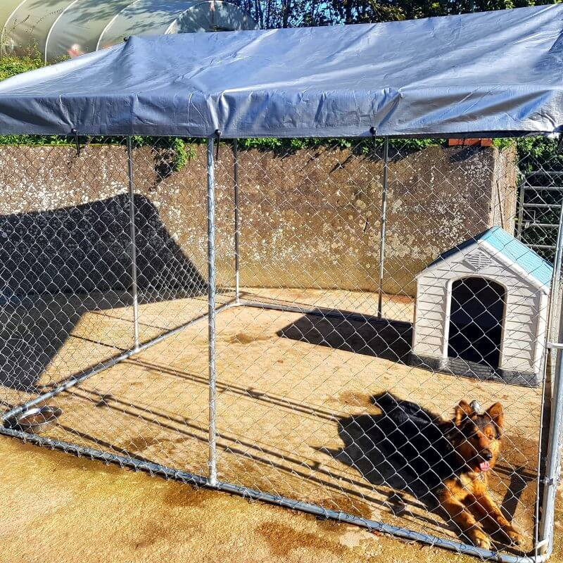 13 x 10FT Walk In Dog Kennel Run Outdoor Exercise Cage Free Roof
