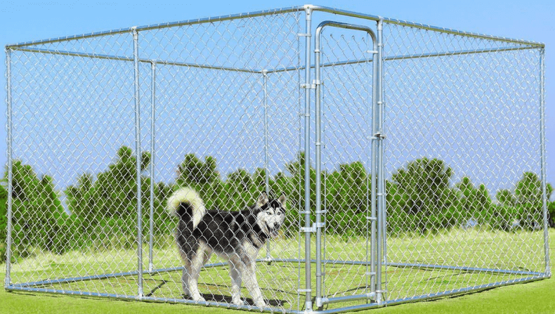 How Much Does a Dog Run Cost?