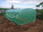 Polytunnel Cover Replacement Only 20 X 12FT